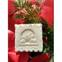 Strom Hand Made Soap - citronová tráva