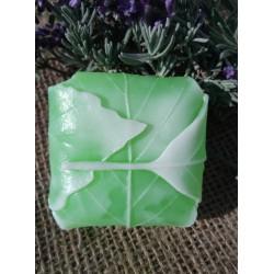 List,zelený čaj s citronovou trávou